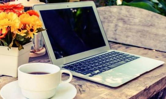 在网上写文章赚钱的自媒体人都具备自己的个性