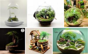 微景观盆栽背后的创业赚钱项目